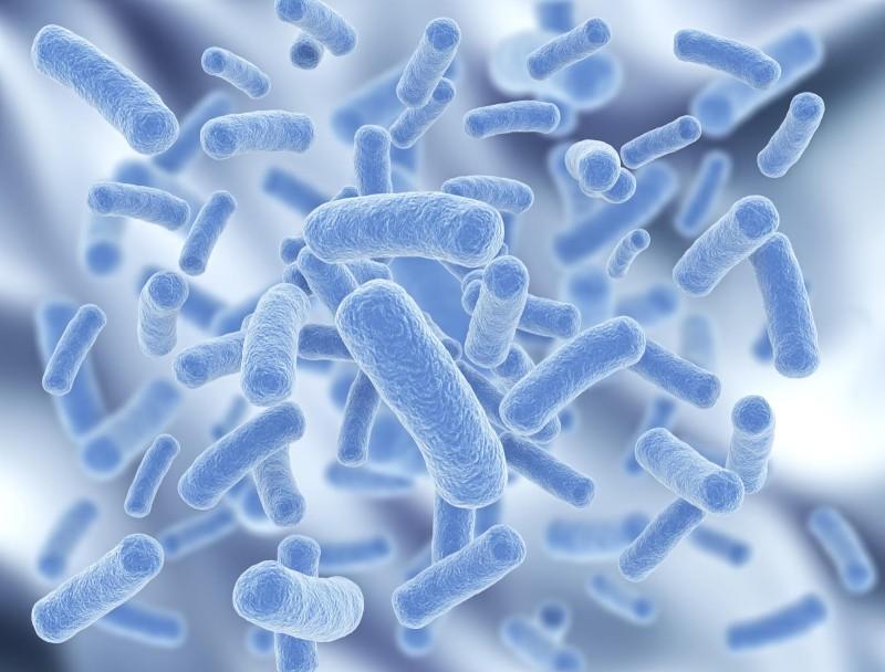 probiotics for psoriasis
